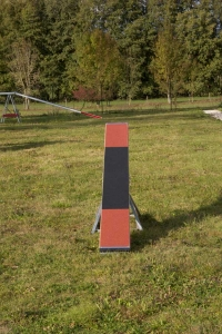 La Balançoire - module Agility - Charny Educ (Yonne)