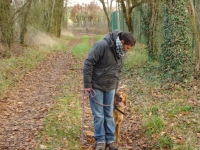 Charny Educ : obeissance chien