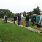 education-canine-charny_cours-collectifs-01