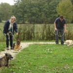 education-canine-charny_cours-collectifs-02