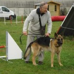 education-canine-charny_cours-collectifs-07
