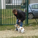 charny-education_education-jack-russell-12