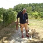 tyson-american-stafforshire-terrier-04